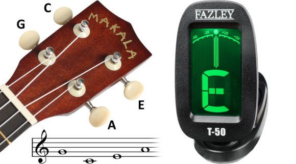 Learn to Play Ukulele in 3 Easy Steps! | Bax Music Blog