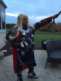 Marvel Thor Dog Costume | BaxterBoo
