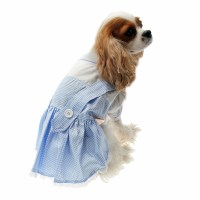 Dorothy Dog Costume Dress - Blue at BaxterBoo