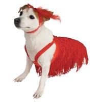 Flapper Dog Dress Costume | BaxterBoo