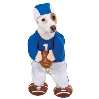 Football Player Dog Halloween Costume by Zack & Zoey