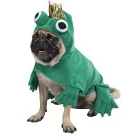 Frog Dog Halloween Costume by Zack & Zoey | BaxterBoo