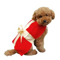 Gift Box Christmas Dog Costume | BaxterBoo