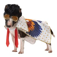 Rock N Roll King Dog Costume | BaxterBoo