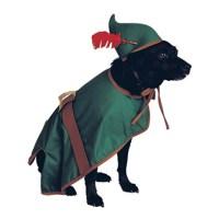Robin Hood Dog Halloween Costume | BaxterBoo