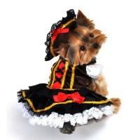 Swashbuckler Pirate Girl Halloween Dog Costume | BaxterBoo