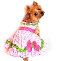 Watermelon Dog Harness Dress by Doggie Design | BaxterBoo