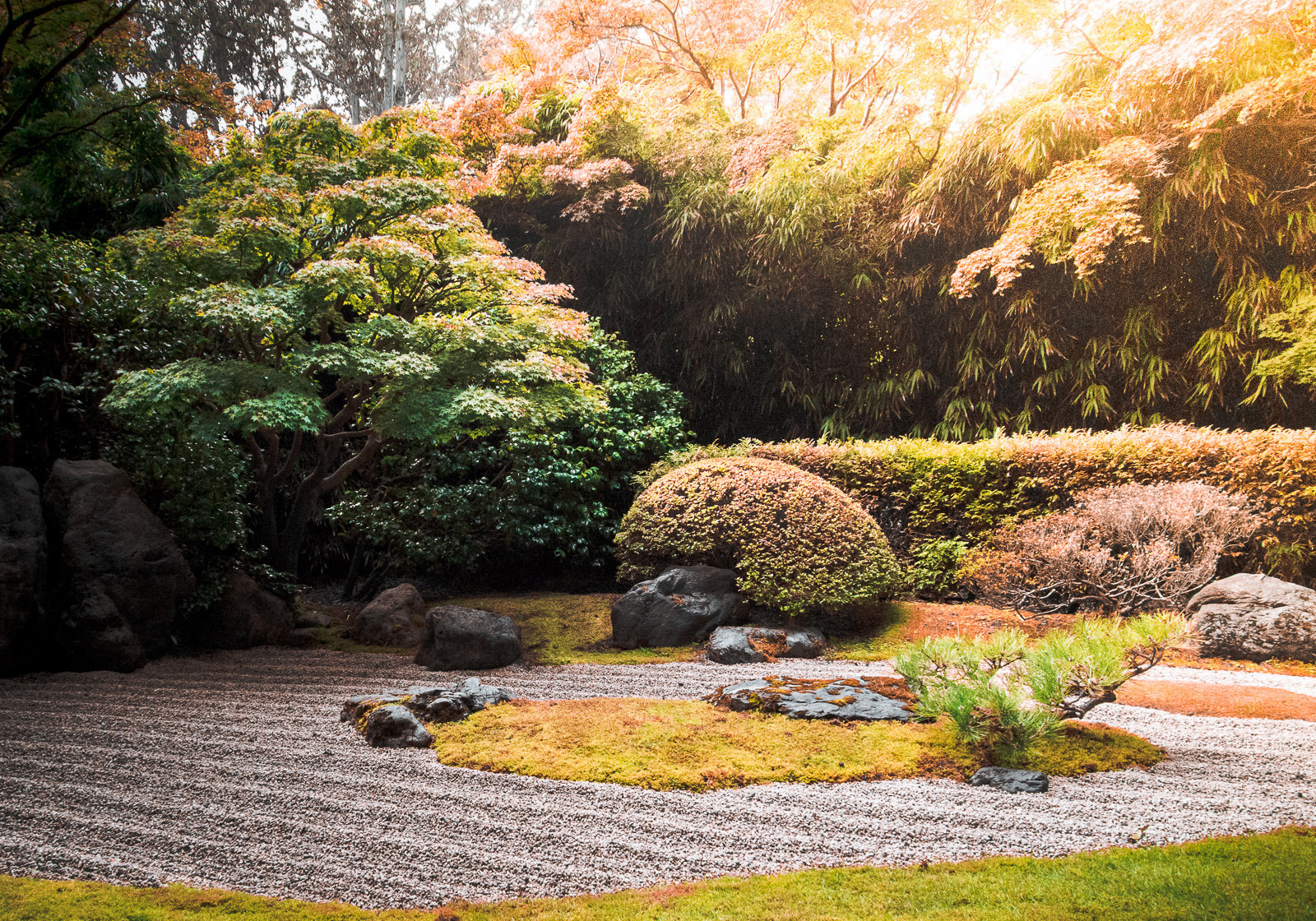 There is nothing more peaceful than having a picnic at a Japanese Zen Garden.