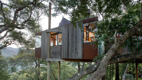 Feel Like a Kid Again at These Breathtaking Treehouses in the Bay Area