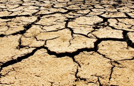 picture of soil during drought
