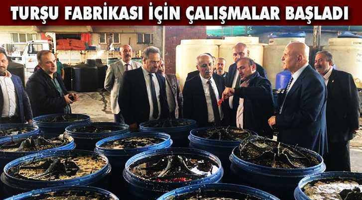 Pekmezci, Turşu Fabrikası İçin Bursa'da İncelemeler Yaptı