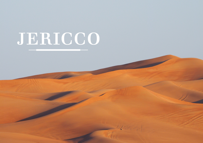 LOGO – JERICCO