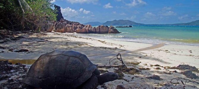 Trauminseln der Seychellen Teil 2: Curieuse