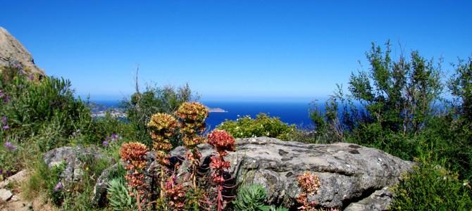 Mein perfekter Tag auf Korsika