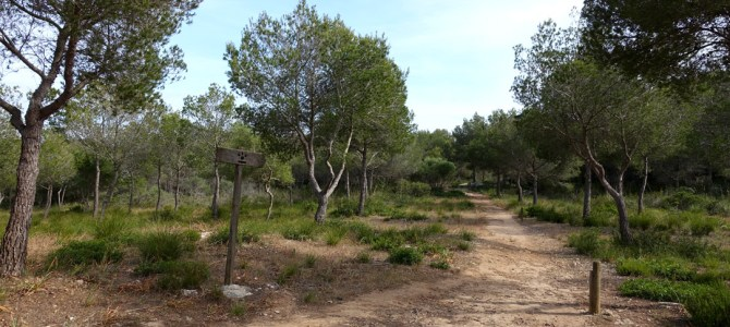 Der Cami de Cavalls: auf Menorcas Pferdepfad die Insel umrunden