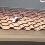 Was macht das Loch im Dach?