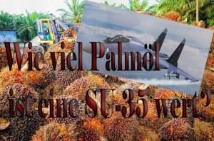 Kaffee und Palmöl für Kampfflugzeuge