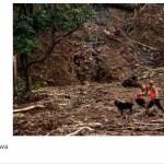 Überschwemmungen und Erdrutsche in Indonesien