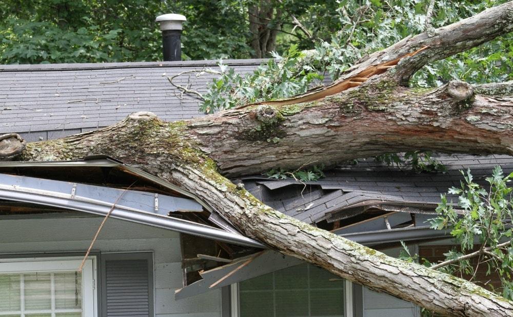 maintain-yard-protect-income-property-heavy-rain-damage-bethesda-maryland