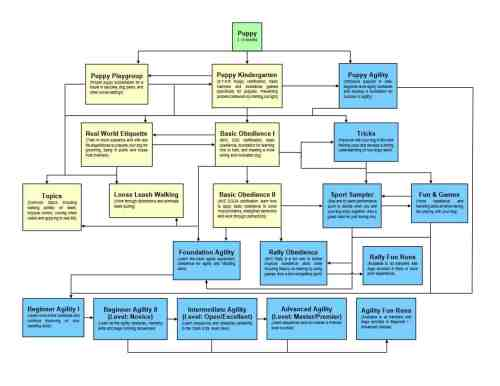 small resolution of puppy training class flow chart