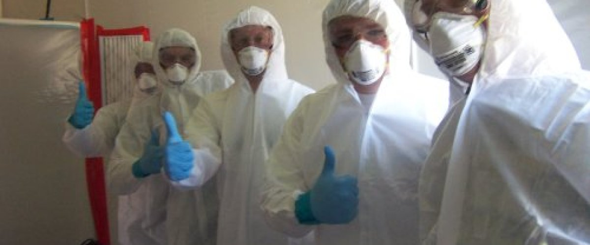 Bay State Mold Removal crew