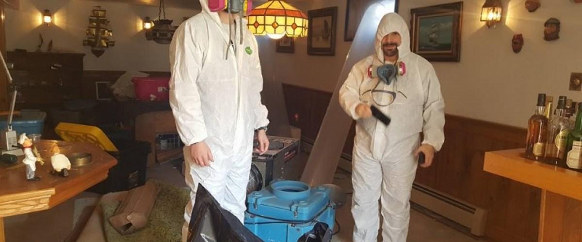 Removing basement mold