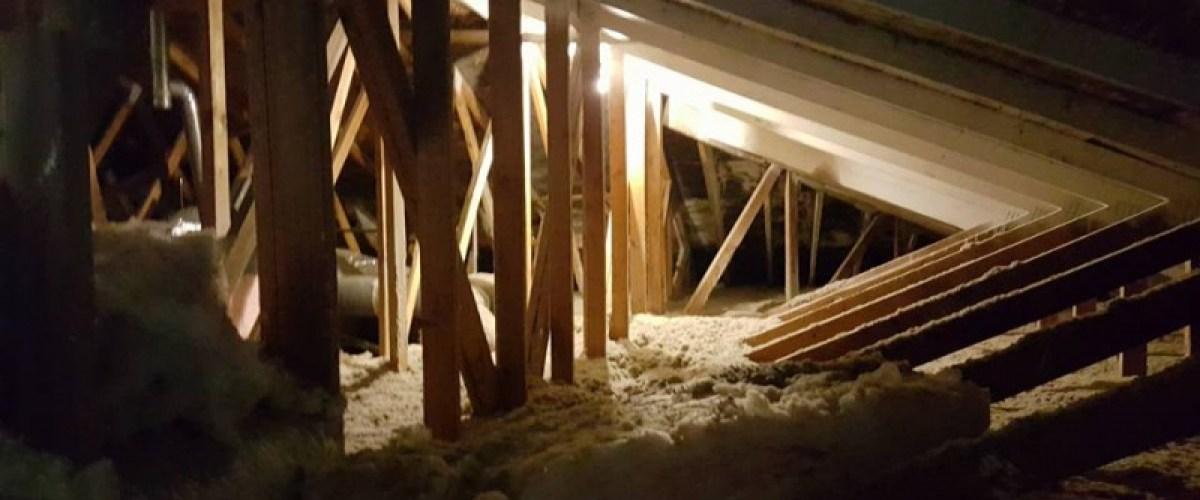 Moldy attic insulation