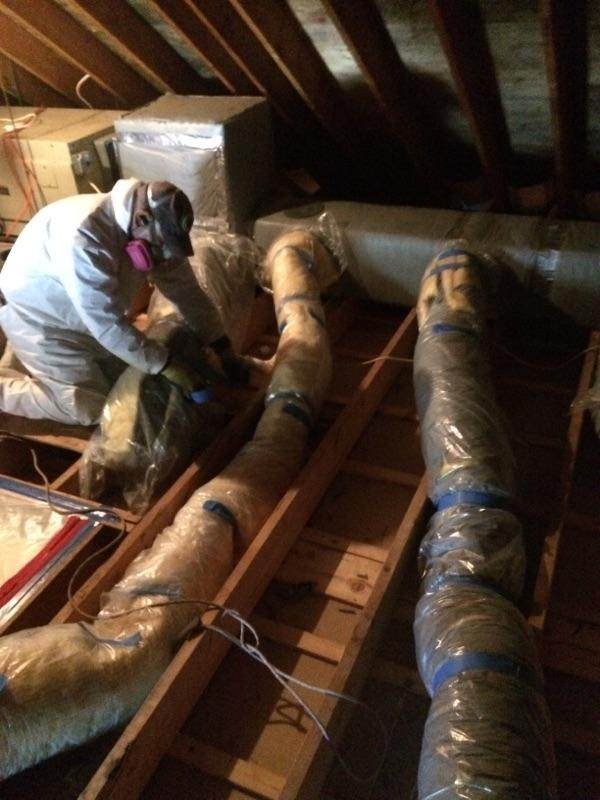 Fall Mold Remediation Available in Saugus MA