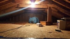 Removing attic mold