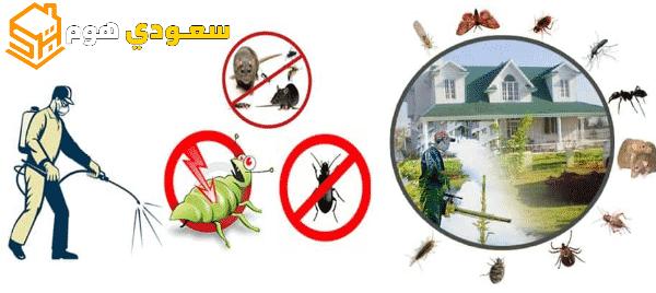 افضل شركة مكافحة حشرات بالرياض خصم 20%