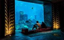 Richest People In Dubai Spend Money - Mybayut