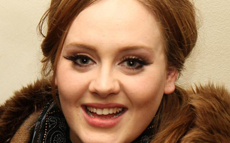 Adele raked in THOUSANDS a day last year despite NO MUSIC: Report