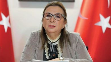 Turkish trade minister: Turkey & EU willing to boost trade, investment ties. 23