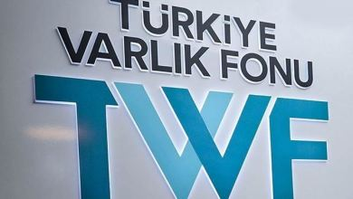 Turkiye Wealth Fund, Chinese insurance agency ink deal 9