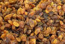 Turkey maintains dried fruit exports amid virus 2
