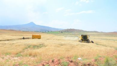 Abandoned farm lands to be improved in Turkey, Azerbaijan & Uzbekistan 29