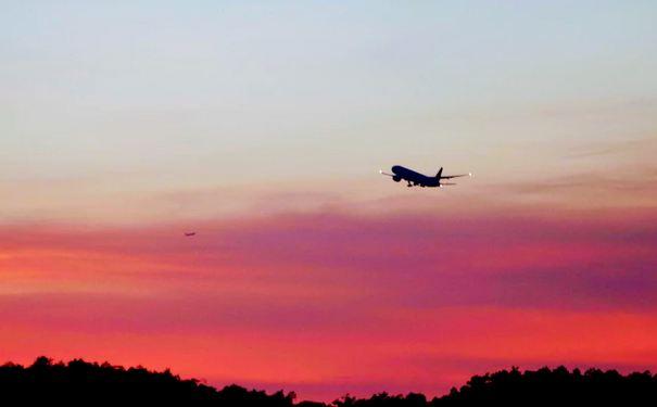 India extends ban on international flights till October 31: Ministry of Civil Aviation 1