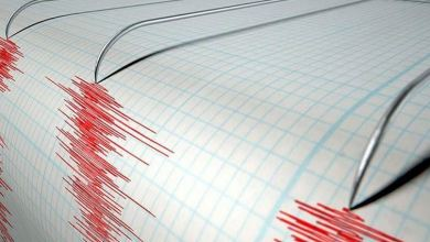 5 earthquakes shake Aegean Sea off Turkey's Mugla coast 29