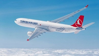 Turkish Airlines ranked 2nd in Europe in terms of daily flights 29
