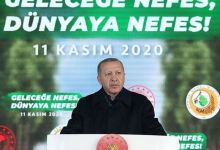 Turkey targets 7B saplings to be planted by 2023: President 10