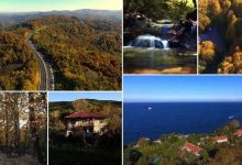 Western Turkey forests charm visitors with autumn hues 2