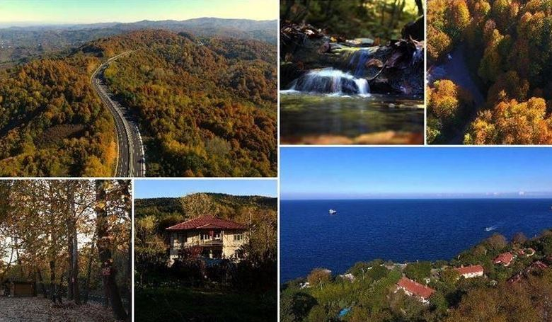 Western Turkey forests charm visitors with autumn hues 1