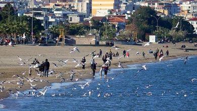 Turkey records sixth warmest December in 2020 5