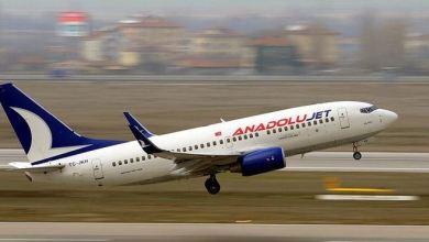 AnadoluJet's Ankara-Tehran flights take off 25