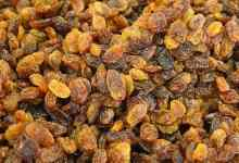 Turkey Specialized Products Stock Exchange has started trading in cotton, next in line are raisins 2