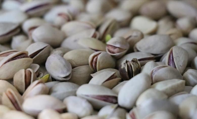 Siirt pistachio, Turkey's best pistachio is exported to Germany 1