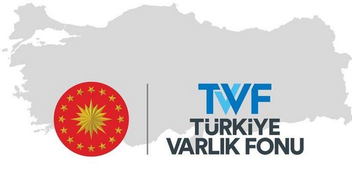 Turkey replaces general manager of Wealth Fund 1