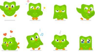 Duolingo, teaching languages to the world filed to go public 6