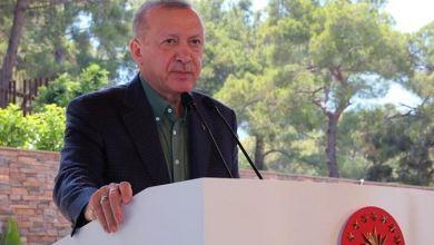 Turkey has huge investment, earning potential in tourism': President Erdogan 4