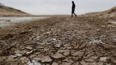 Japan to offer zero-interest loans to battle climate change 10